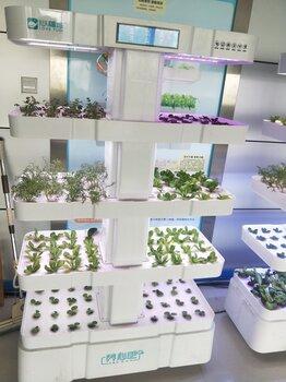 心福地养心吧室内水培种植机