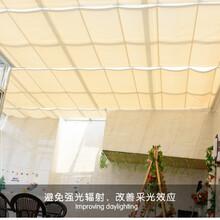 陽光房遮陽頂簾自動天窗蓬家用手動玻璃房天窗頂棚隔熱電動天棚簾圖片