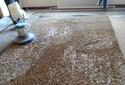 龍崗專業地毯清洗多少錢圖片