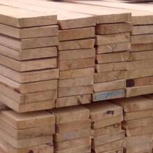东丽木方厂家订制图片
