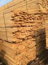 石家庄建筑木方定制价格图片