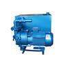 真空泵/水環式真空泵/2BV帶水箱