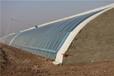 奧農苑節能日光溫室大棚設計安裝