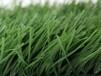 郴州宜章縣人造草坪草坪圍擋