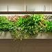 增城仿真植物墻施工團隊