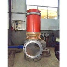 固渣泵污泥泵抽泥视频图片