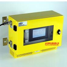 山東智普儀器:UV-2300C型壁掛式臭氧分析儀臭氧檢測儀圖片