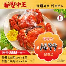 蟹中王2888型大闸蟹套餐礼盒贵阳螃蟹大闸蟹价格图片