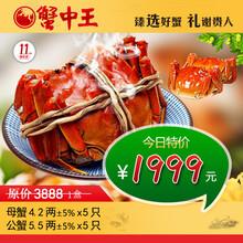 蟹中王3888型大闸蟹套餐礼盒大闸蟹价格图片
