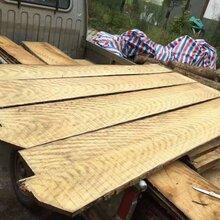 金丝楠板材料原木普洱市批发商图片
