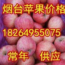 山东红富士苹果批发安徽红富士苹果价格河南红富士苹果基地江苏苹果批发图片