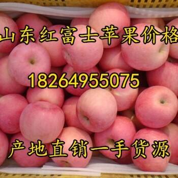 山东冰糖心苹果价格陕西冰糖心苹果基地烟台苹果价格日照苹果基地