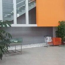 茶山靠镇中心花园式标准厂房8000平方带地坪漆出租图片