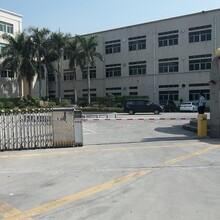 企石原房东标准三层5000平方带地坪漆厂房出租