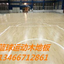 羽毛球馆木地板厂家施工,篮球木地板施工价格,橡胶减震垫图片