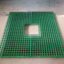 供应养生玻璃钢格栅养殖专用网图片