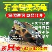 出售石金钱煲汤龟、泡酒龟、南石老龟黄喉拟水龟