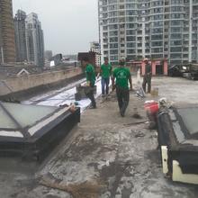 哈尔滨防水,哈尔滨专业屋面防水,鑫绿洲防水十年质保图片