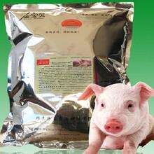 山东发酵床养猪技术招商加盟,金宝贝干撒式发酵床生态养猪技术图片