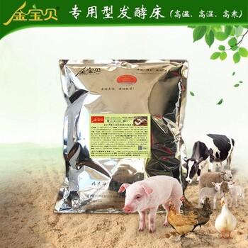 干撒式发酵床养猪菌种
