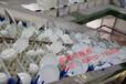 一次性餐具消毒清洗烘干包装设备-广州霖森