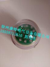 KT-B电压型户外线路型高压带电指示器图片