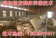 吉林长春发酵床养猪菌种正规厂家面向全国发货