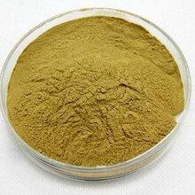 芦笋粉优质芦笋加工精制芦笋粉天然有机食品固体饮料