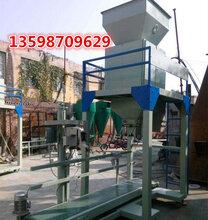 工业盐定量包装机相连双称立式包装机电子定量包装机