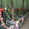 天津公墓价格
