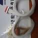 国产J63A-212-069-161-THJ63A-212-069-261-JC微小型矩形连接器供应
