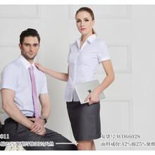 山东短袖男士衬衣白色60%棉细斜纹现货厂家直销可量体定做