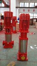 XBD5.0/30消防泵/喷淋泵厂家生产销售图片