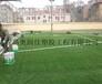 足球场铺装专用草坪-怎样维护人造草坪足球场