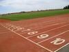 新校区塑胶跑道人造草坪铺装-专业承接地面工程单位
