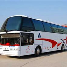郑州东营客车郑州到东营155/3820/1808大巴图片