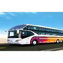 专线:郑州到广东银湖的大巴直达车-客运专车专线直达