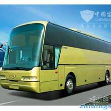 郑州灵武客车郑州到灵武130/076/12038大巴图片