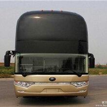 专线:郑州到澄海的大巴直达车-客运专车准点