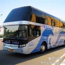 郑州盐池长途客车郑州到盐池卧铺大巴186/2557/7917图片