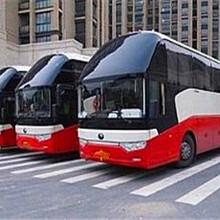 长途客车176/9806/8282郑州到剑阁豪华大巴天天万里直图片