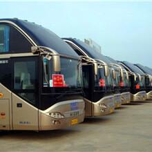 长途客车130/076/12038郑州到秦皇岛豪华大巴天天万里直图片