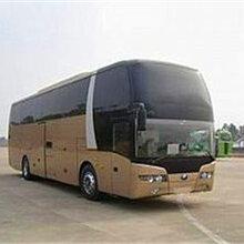 专线:郑州到广东龙华的大巴直达车-客运专车准点发车