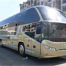 专线:郑州到普宁的大巴直达车-客运专车舒适