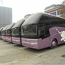 长途郑州176/9806/8282郑州到福鼎大巴万里客运直营图片