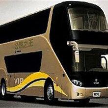 专线:郑州到茂名的大巴直达车-客运专车专线直达