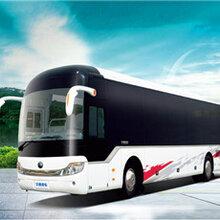 专线:郑州到阳江的大巴直达车-客运专车准点发车