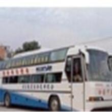 温州客运155/3820/2628郑州到温州大巴图片