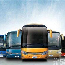 专线:郑州到清远的大巴直达车-客运专车多长时间