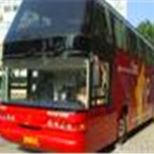 郑州大巴到中山176-9806-8282客车直达车图片